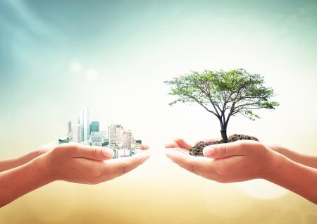 Two human hands holding big tree and city over blurred green forest background